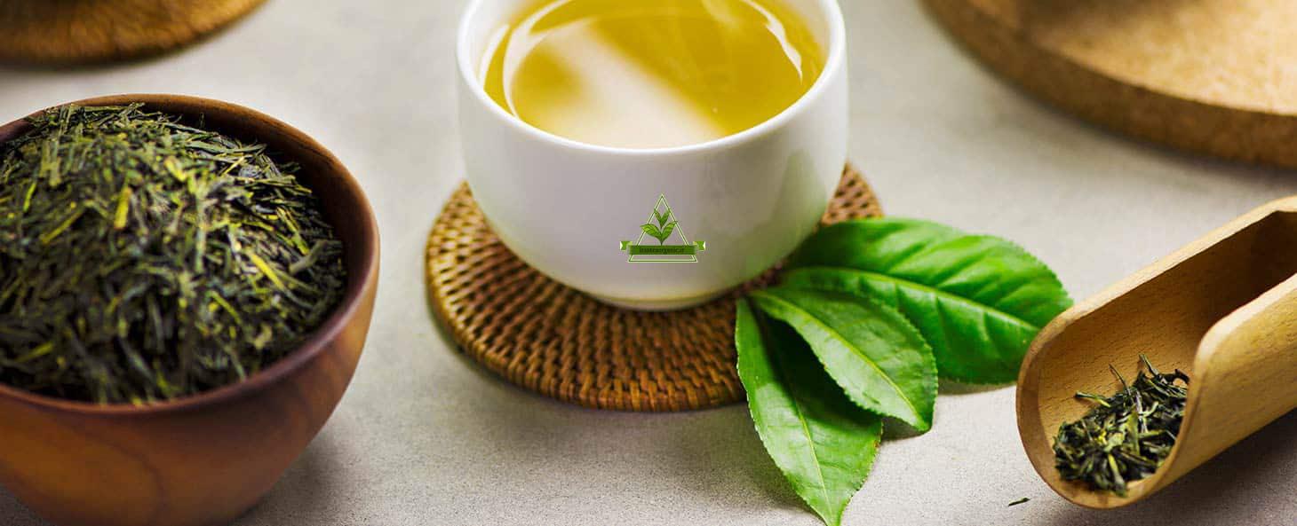 خرید چای سبز قلم درشت لاهیجان