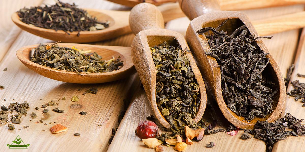 خرید چای اصل لاهیجان