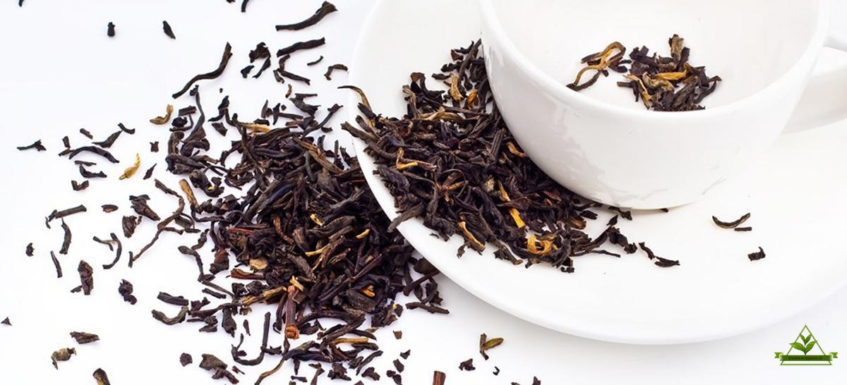 صادرات چای ممتاز بهاره شمال