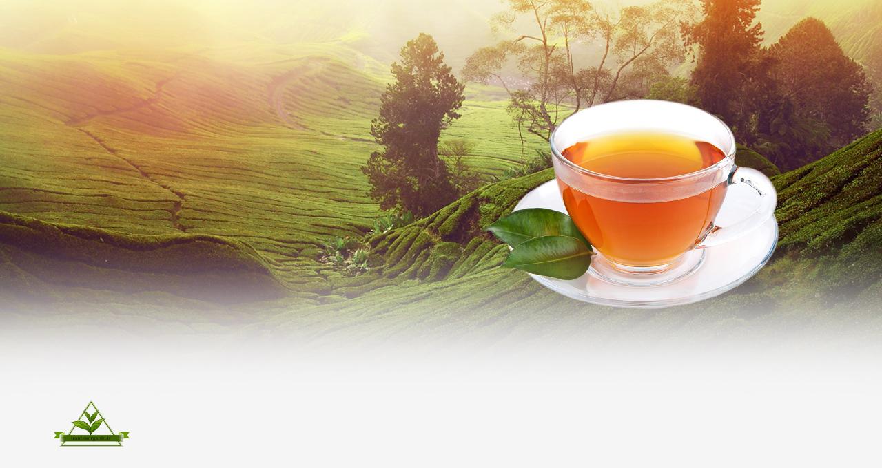 چای سرگل چین اول بهاره ایرانی
