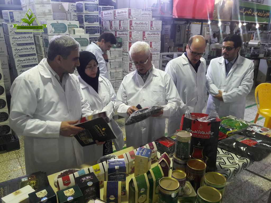 خرید چای ارگانیک رفاه لاهیجان