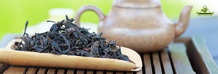 خرید چای ارگانیک لاهیجان