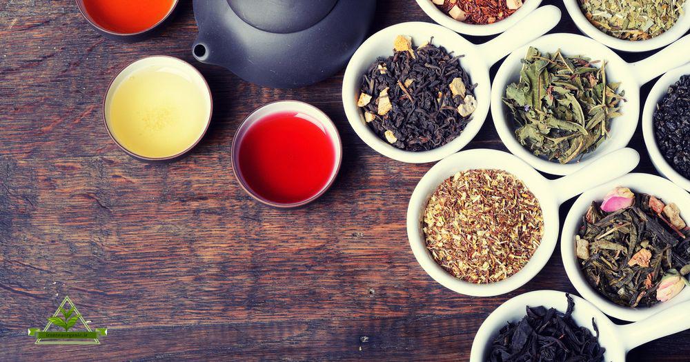 صادرات چای گیلان به سایر نقاط دنیا