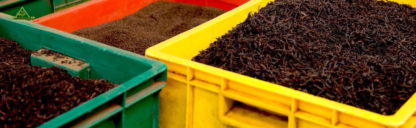 صادرات چای فله لاهیجان