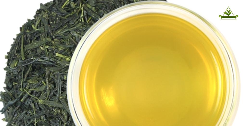 صادرات چای سبز ایرانی