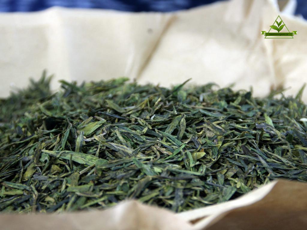 صادرات چای سبز ایرانی به روسیه
