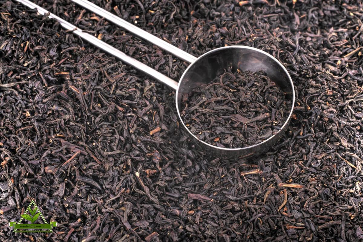 فروش اینترنتی چای شمال