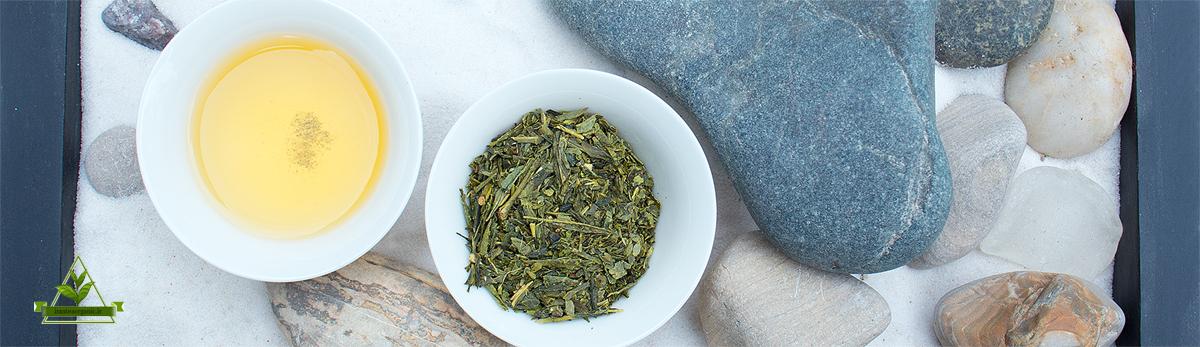 خرید و فروش چای سبز