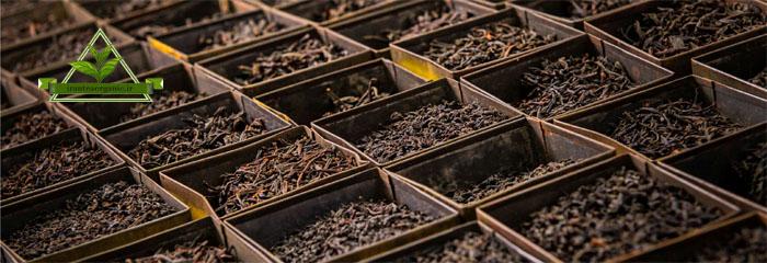 خرید انواع چای سیاه لاهیجان