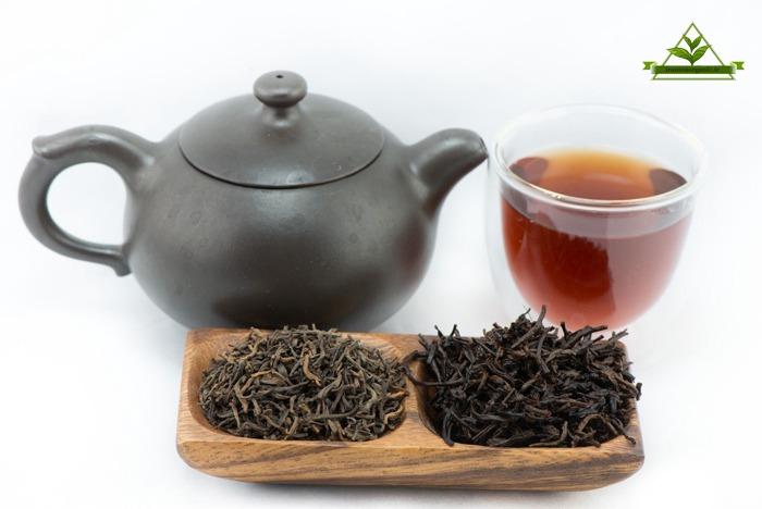 عرضه چای شمال