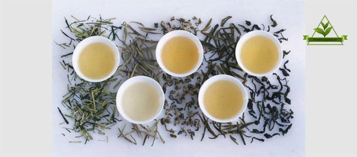 مرکز فروش چای سبز