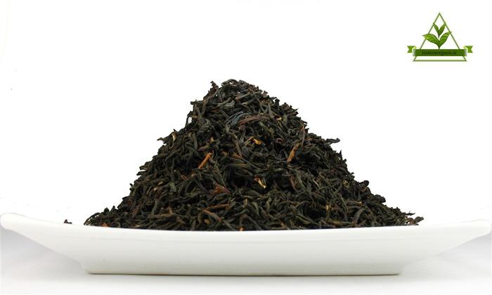 چای شمال