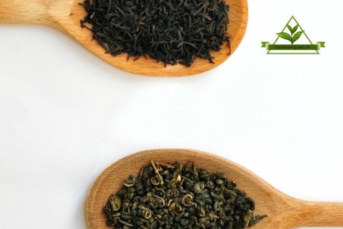 خرید و فروش انواع چای سیاه و چای سبز لاهیجان
