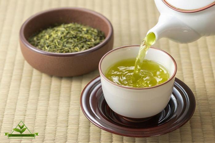صادرات چای سبز