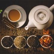 نمایندگی فروش چای گیلان