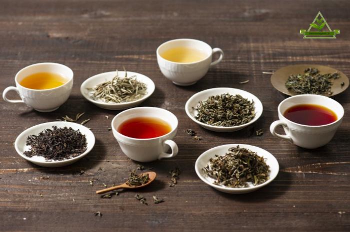 پخش چای طبیعی و بدون اسانس در بازار