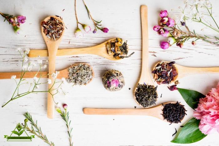 چای گیلان بهاره