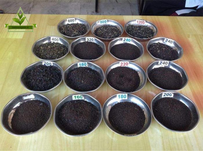 انواع چای سیاه