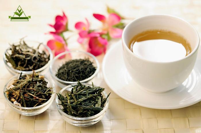 قیمت چای سبز درجه یک شمال