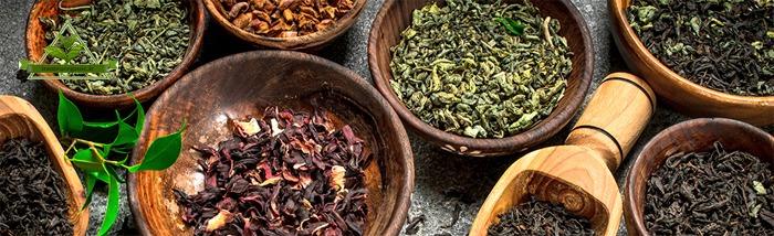 فروش عمده چای شمال