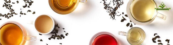 چای خوش طعم شمال