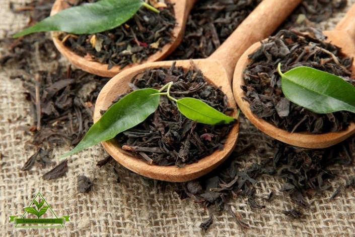 فروش چای سیاه ارگانیک
