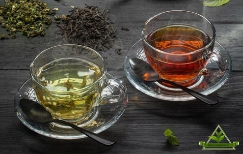 خرید عمده چای