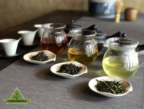 خرید چای سیاه و چای سبز